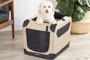 Los 10 mejores transportines para perros